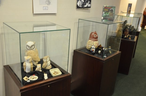 Display cases showing owls collected by Lillian White. The Decatur Library is showing the collection in honor of Black History month. Photo by: Dan Whisenhunt