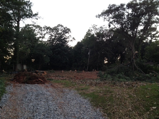 Reader submitted photo of clear-cut lot on Lakeshore Drive in Avondale Estates.